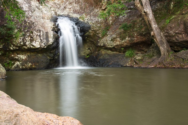 Kondalilla falls, Kondalilla National Park