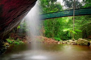 Harry's at Buderim, Serenity Falls