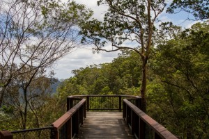 The lookout at Mapleton Falls National Park
