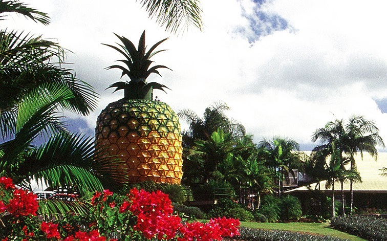 Big Pineapple, Nambour, Sunshine Coast